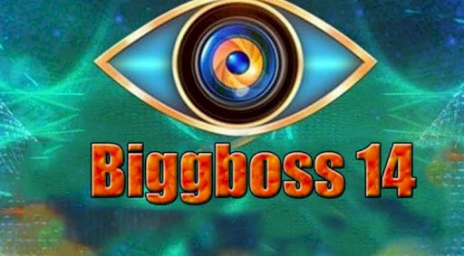 Bigg Boss Season 14 What To expect and Contestant Details